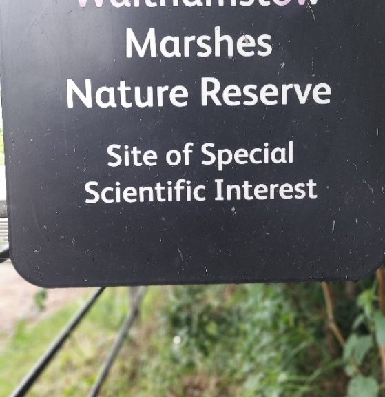 Walthamstow Marshes Nature Reserve SSSi